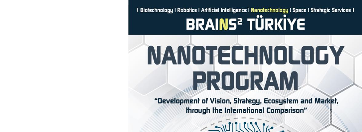 BRAINS2 TÜRKİYE | Nanotechnology Program