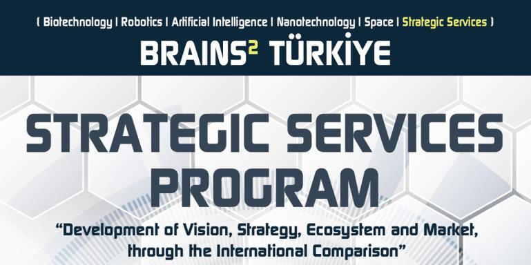 BRAINS² TÜRKİYE  |  Strategic Services Program
